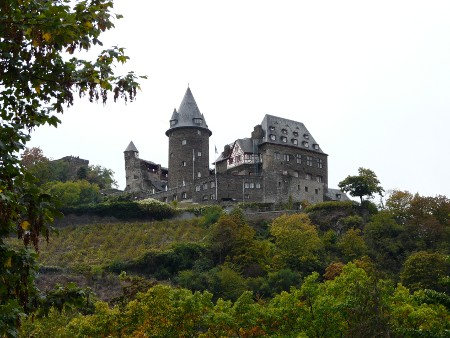 The Rhineland is characterised by castles and vineyards such as these