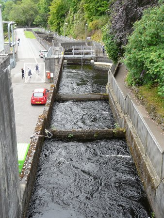 Salmon Staircase at Pitlochry hydroelectric power station and dam
