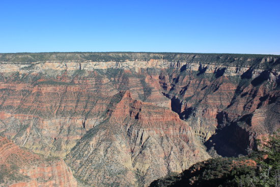A view at North Rim