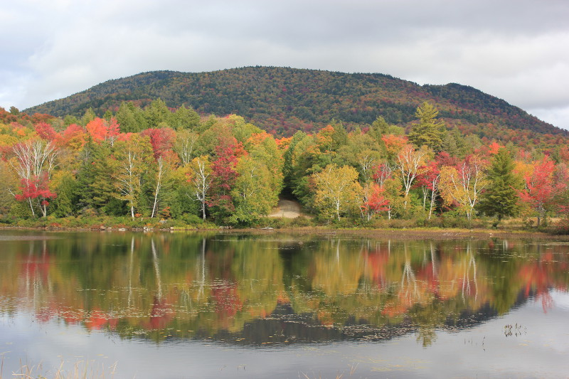New England fall colours reflected in lake