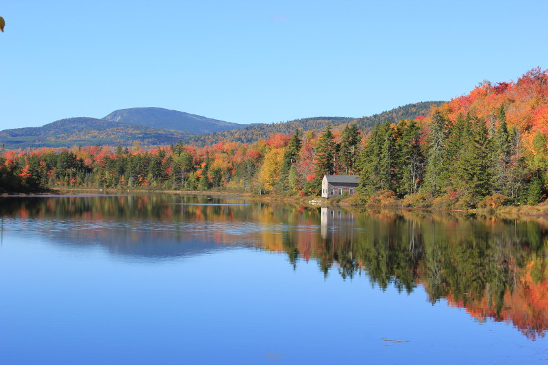Lake with trees in fall, Maine