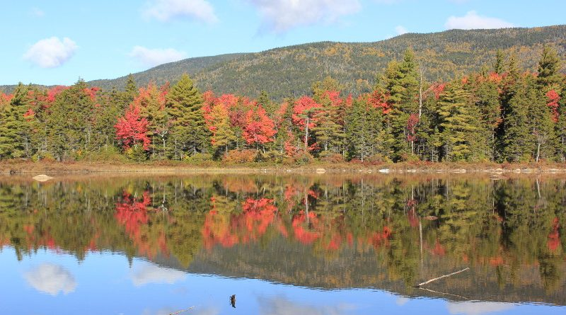 Fall colours reflected in lake