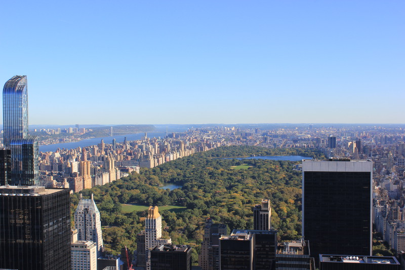 Central Park from Rockefeller Center
