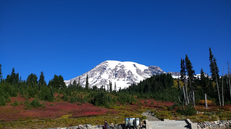 Mount Rainier, WA, USA